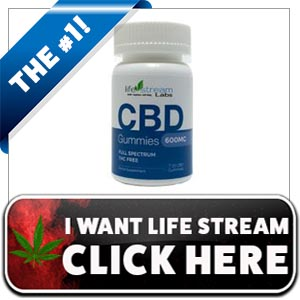 LifeStream Labs CBD